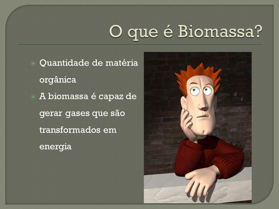O que é Biomassa Quantidade de matéria orgânica