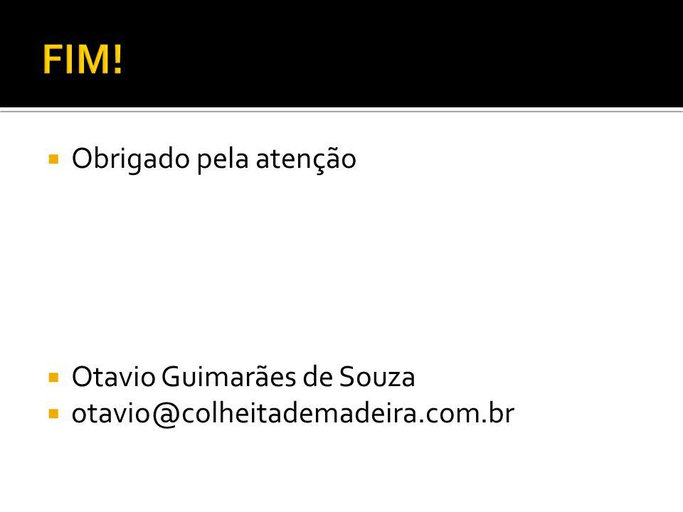 FIM! Obrigado pela atenção Otavio Guimarães de Souza