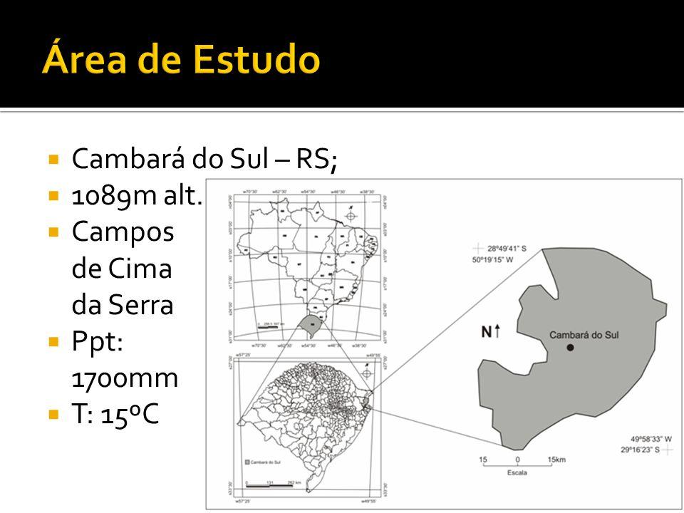 Área de Estudo Cambará do Sul – RS; 1089m alt. Campos de Cima da Serra