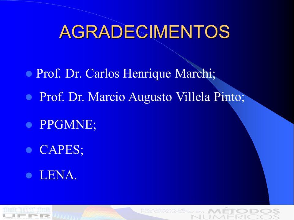 AGRADECIMENTOS Prof. Dr. Carlos Henrique Marchi;