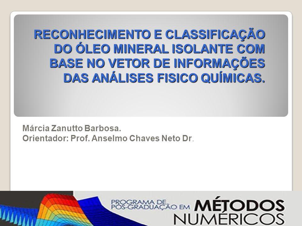 Márcia Zanutto Barbosa. Orientador: Prof. Anselmo Chaves Neto Dr.