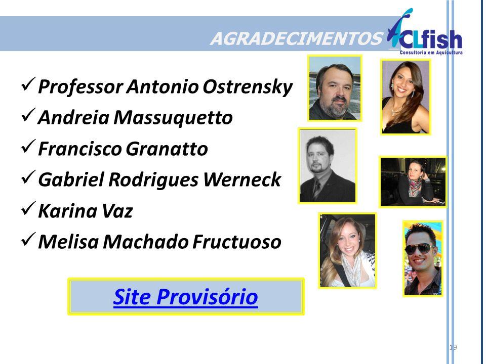 Site Provisório Professor Antonio Ostrensky Andreia Massuquetto