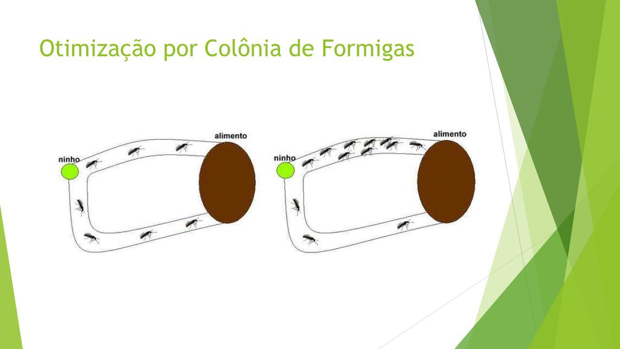 Otimização por Colônia de Formigas
