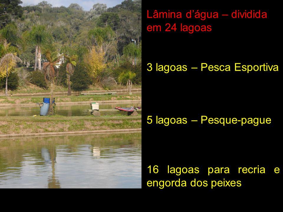 Lâmina d'água – dividida em 24 lagoas
