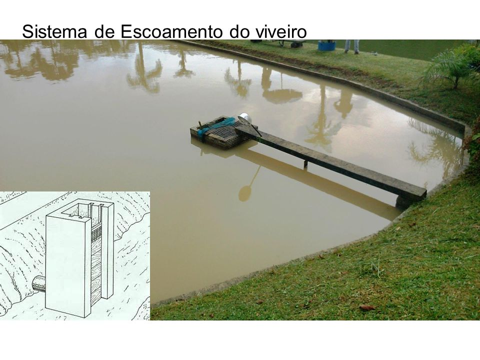 Sistema de Escoamento do viveiro