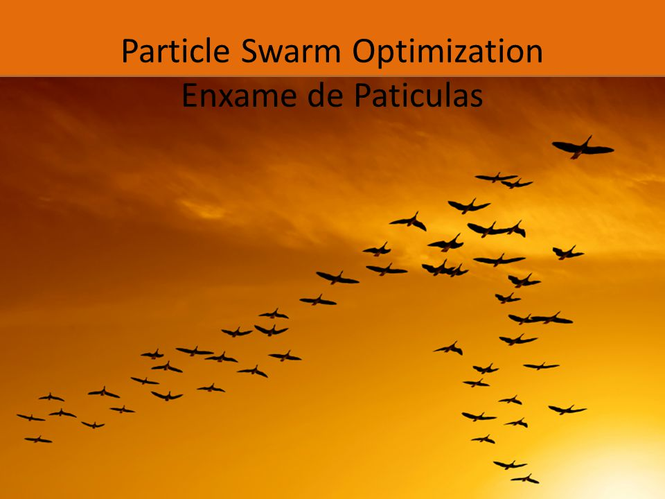 Particle Swarm Optimization Enxame de Paticulas