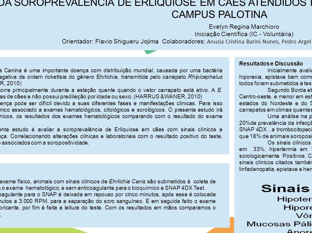 AVALIAÇÃO DA SOROPREVALÊNCIA DE ERLIQUIOSE EM CÃES ATENDIDOS NO HOSPITAL VETERINÁRIO DA UFPR-CAMPUS PALOTINA