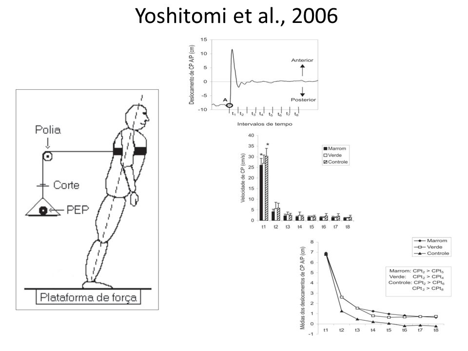 Yoshitomi et al., 2006