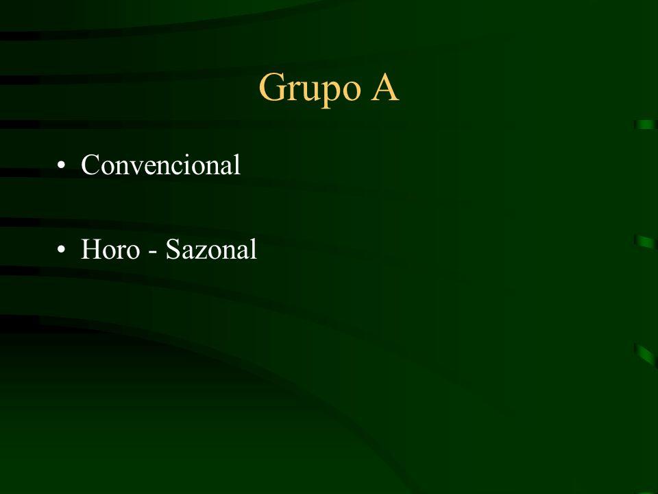 Grupo A Convencional Horo - Sazonal