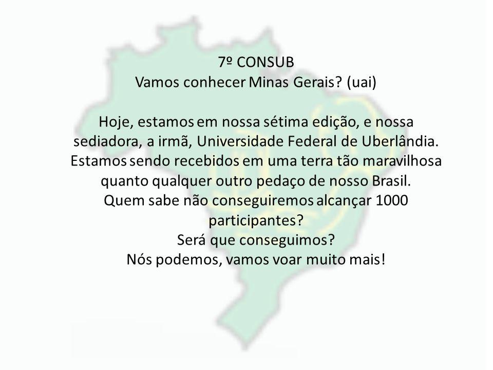 Vamos conhecer Minas Gerais (uai)