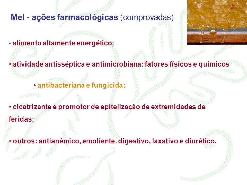 Mel - ações farmacológicas (comprovadas)