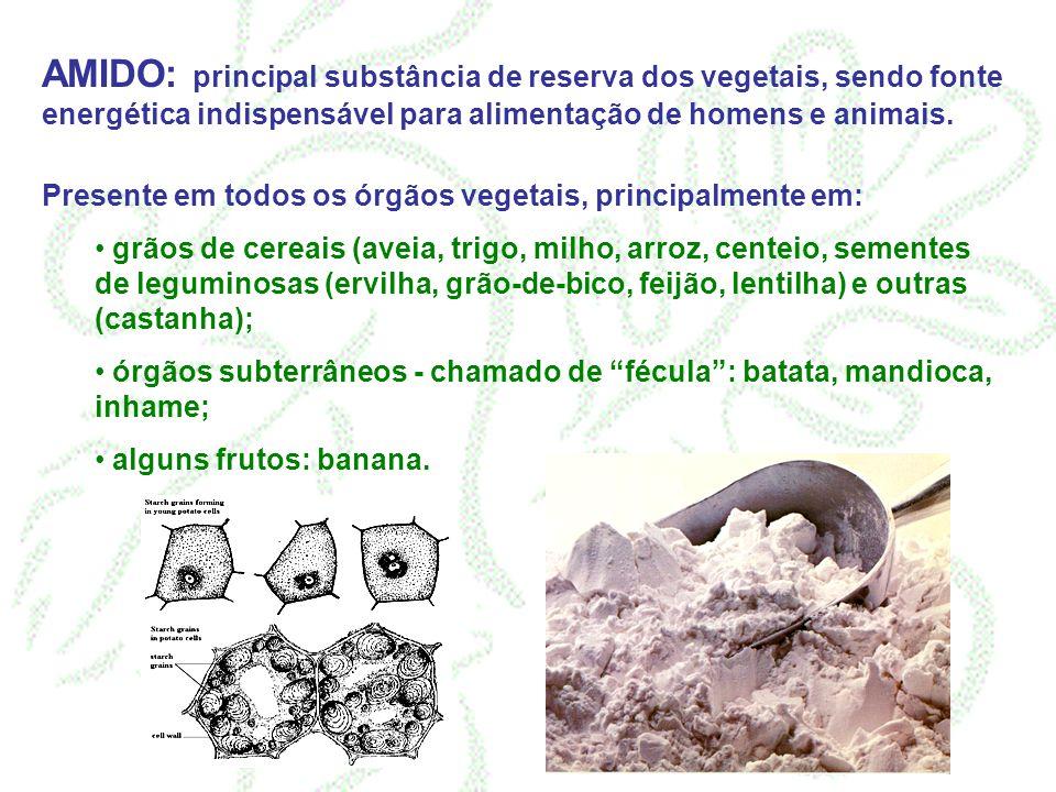 AMIDO: principal substância de reserva dos vegetais, sendo fonte energética indispensável para alimentação de homens e animais.