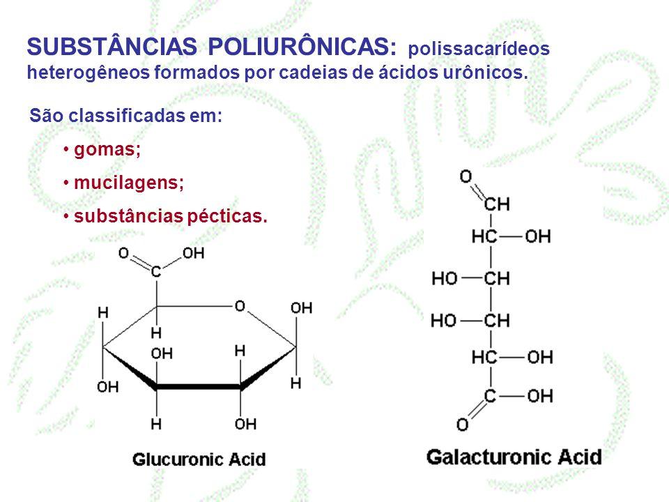 SUBSTÂNCIAS POLIURÔNICAS: polissacarídeos heterogêneos formados por cadeias de ácidos urônicos.