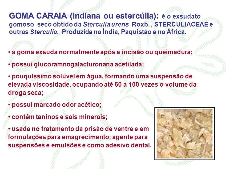 GOMA CARAIA (indiana ou estercúlia): é o exsudato gomoso seco obtido da Sterculia urens Roxb. , STERCULIACEAE e outras Sterculia. Produzida na Índia, Paquistão e na África.