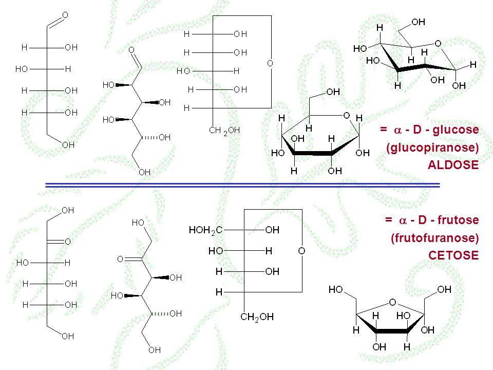 = a - D - glucose (glucopiranose) ALDOSE = a - D - frutose (frutofuranose) CETOSE