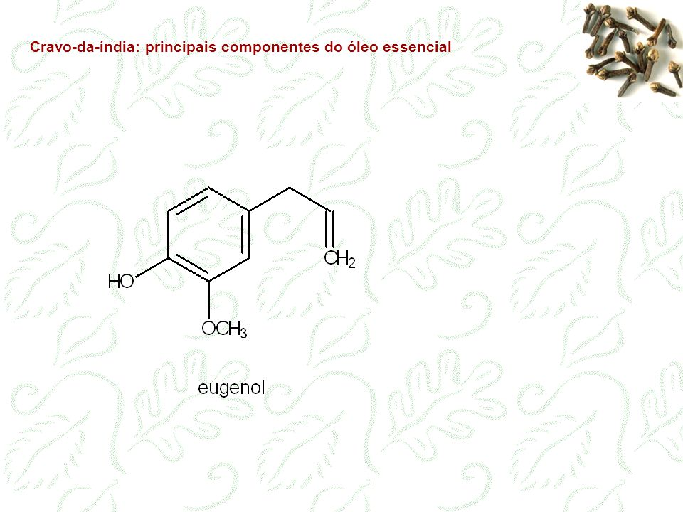 Cravo-da-índia: principais componentes do óleo essencial