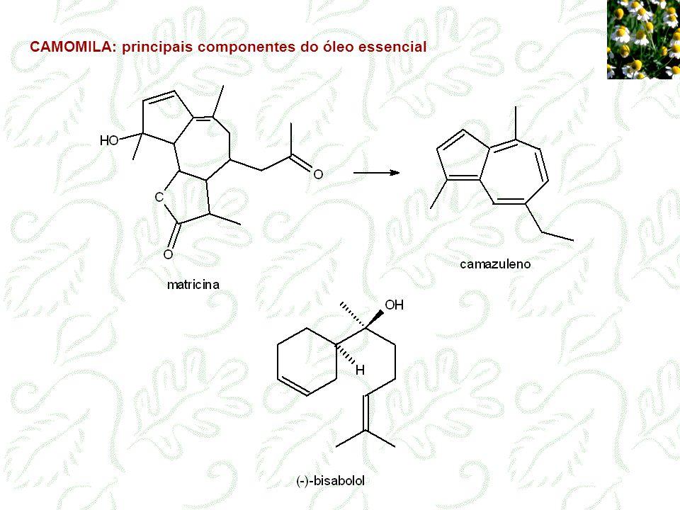CAMOMILA: principais componentes do óleo essencial
