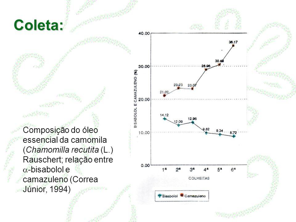 Coleta: Composição do óleo essencial da camomila (Chamomilla recutita (L.) Rauschert; relação entre a-bisabolol e camazuleno (Correa Júnior, 1994)