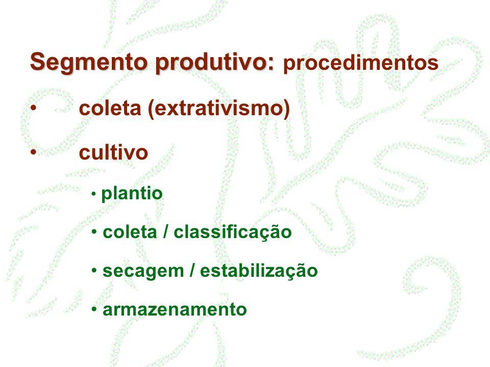 Segmento produtivo: procedimentos