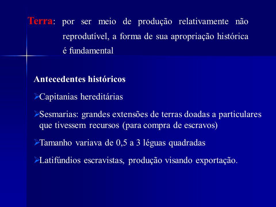 Terra: por ser meio de produção relativamente não reprodutível, a forma de sua apropriação histórica é fundamental