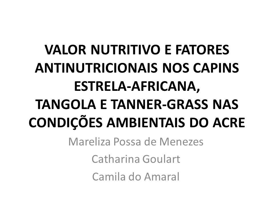 Mareliza Possa de Menezes Catharina Goulart Camila do Amaral