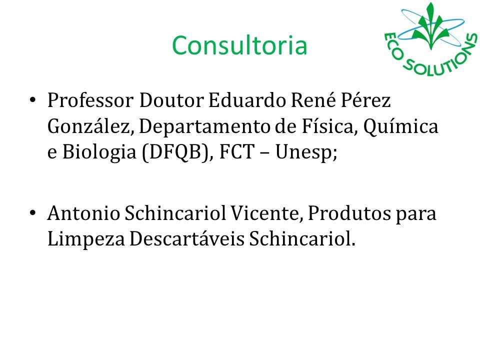 Consultoria Professor Doutor Eduardo René Pérez González, Departamento de Física, Química e Biologia (DFQB), FCT – Unesp;