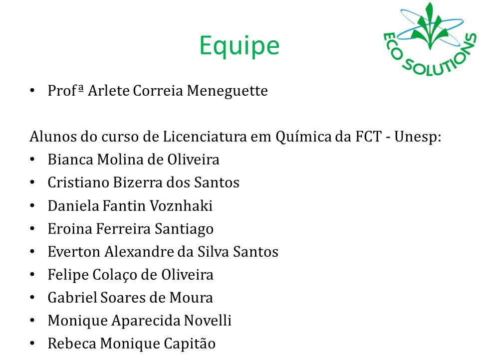 Equipe Profª Arlete Correia Meneguette