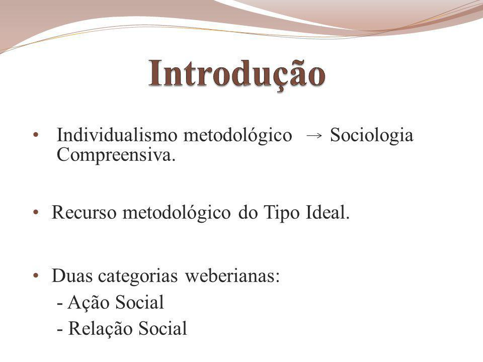 Introdução Individualismo metodológico Sociologia Compreensiva.