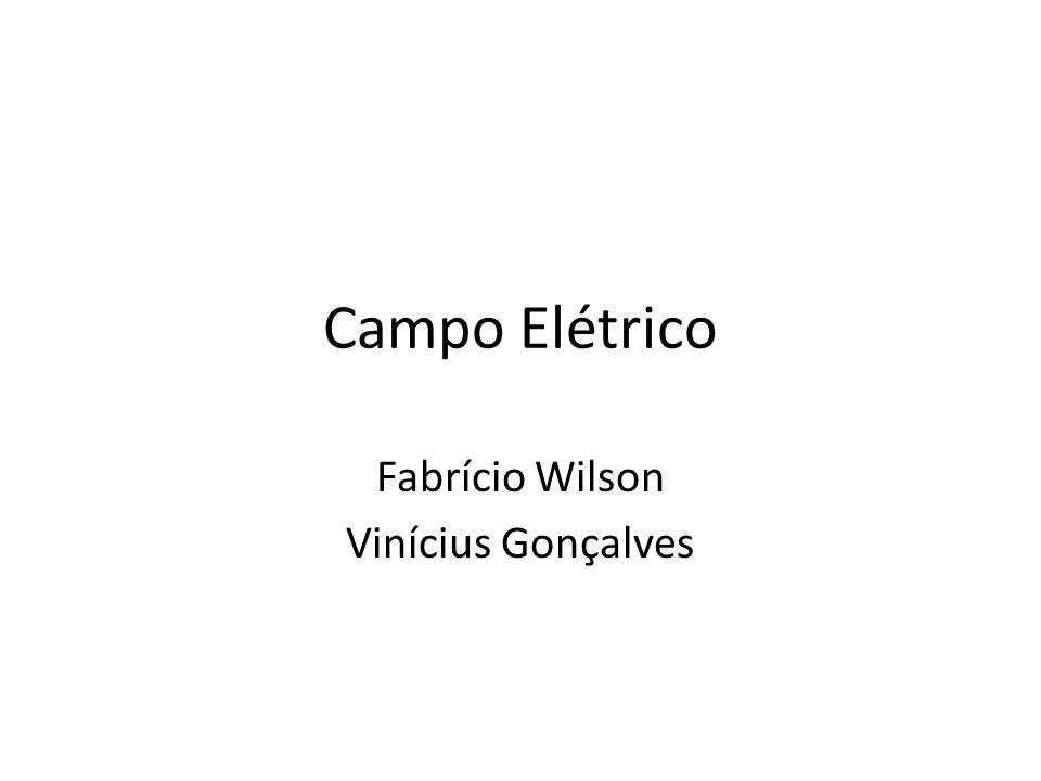 Fabrício Wilson Vinícius Gonçalves
