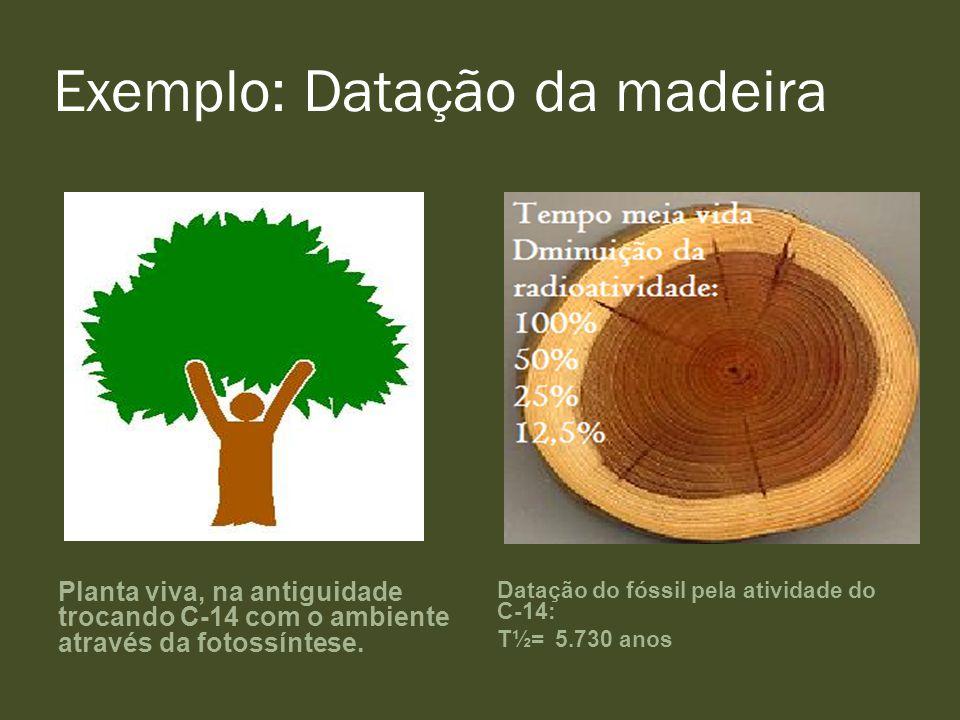 Exemplo: Datação da madeira