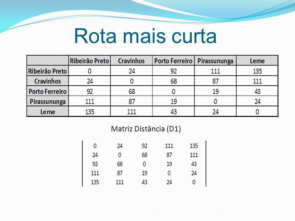 Matriz Distância (D1)