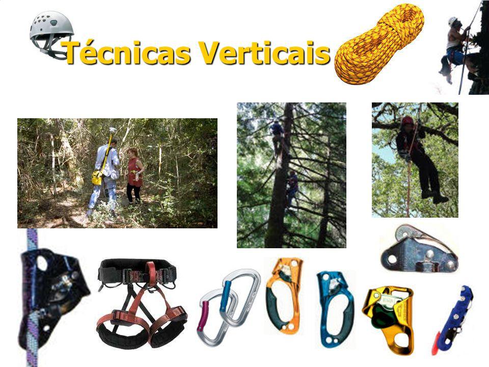 Técnicas Verticais