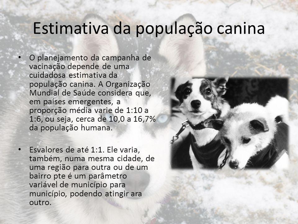 Estimativa da população canina