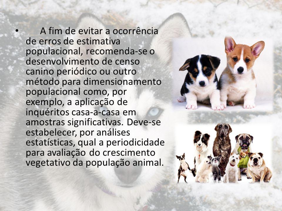 A fim de evitar a ocorrência de erros de estimativa populacional, recomenda-se o desenvolvimento de censo canino periódico ou outro método para dimensionamento populacional como, por exemplo, a aplicação de inquéritos casa-a-casa em amostras significativas.