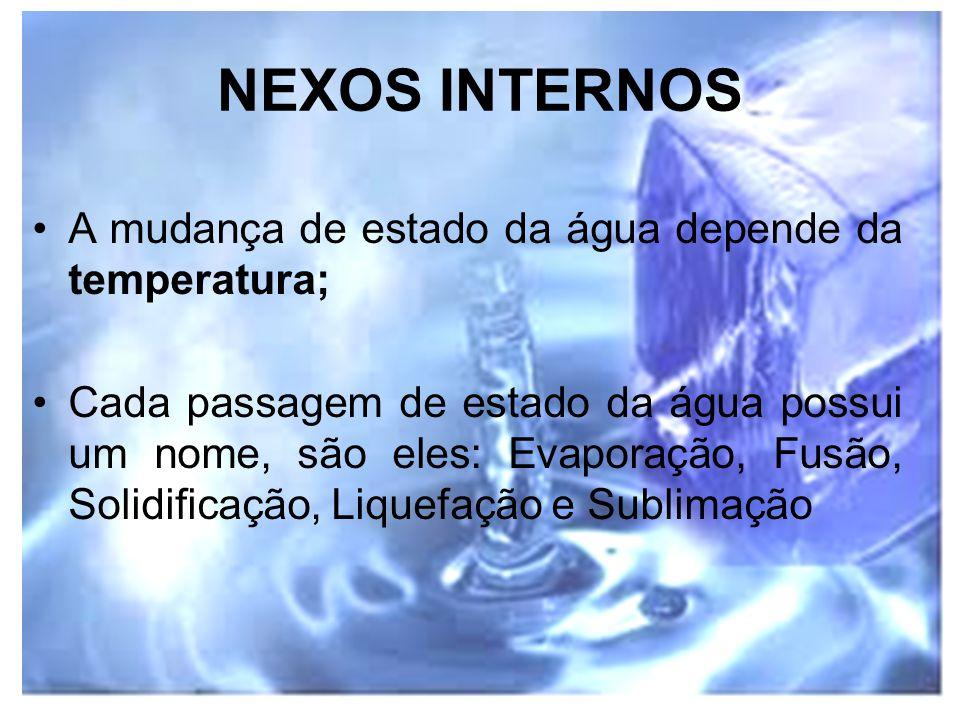 NEXOS INTERNOS A mudança de estado da água depende da temperatura;