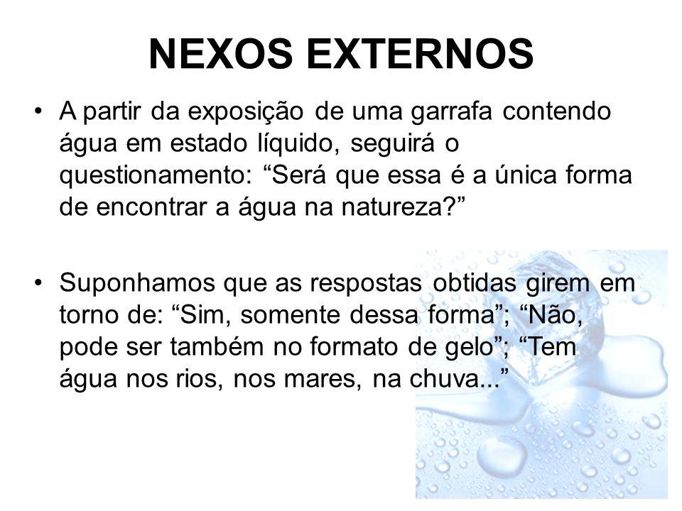 NEXOS EXTERNOS