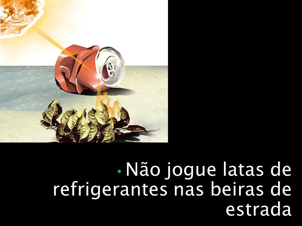 Não jogue latas de refrigerantes nas beiras de estrada