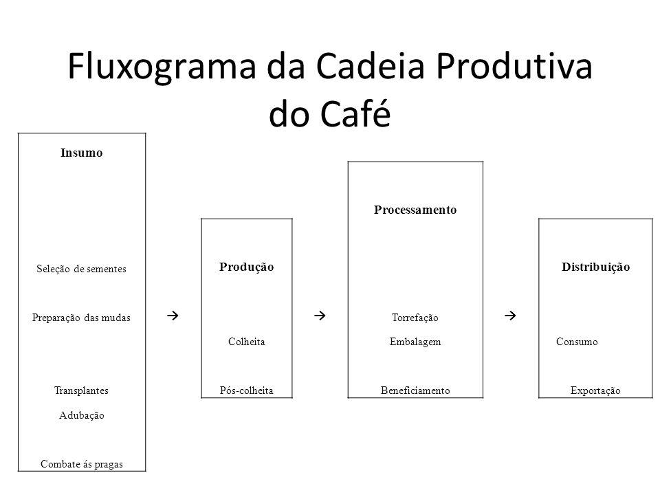 Fluxograma da Cadeia Produtiva do Café