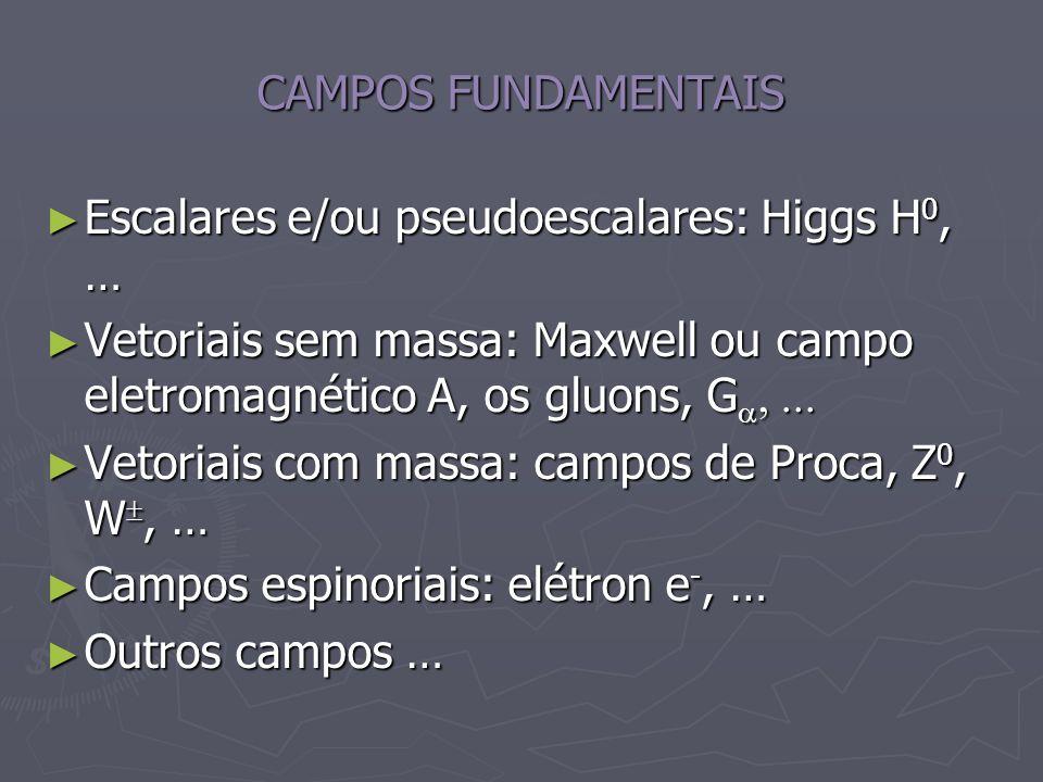 CAMPOS FUNDAMENTAIS Escalares e/ou pseudoescalares: Higgs H0, … Vetoriais sem massa: Maxwell ou campo eletromagnético A, os gluons, Ga, ...