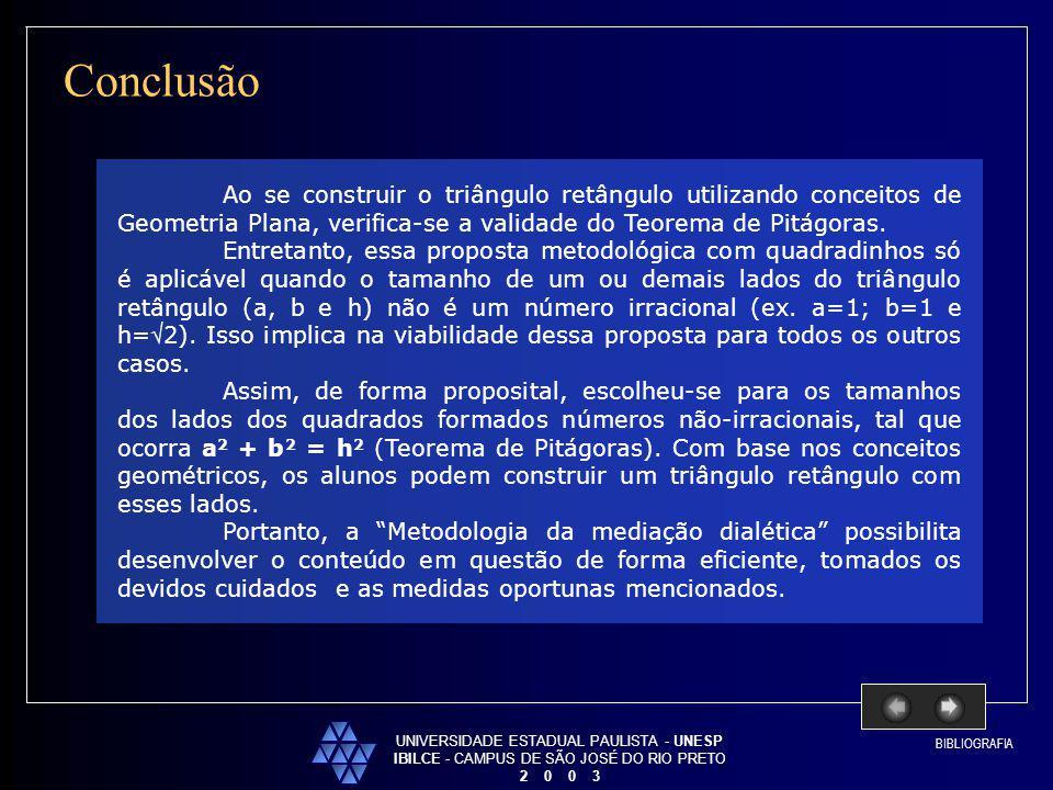 Conclusão UNIVERSIDADE ESTADUAL PAULISTA - UNESP. IBILCE - CAMPUS DE SÃO JOSÉ DO RIO PRETO. 2 0 0 3.