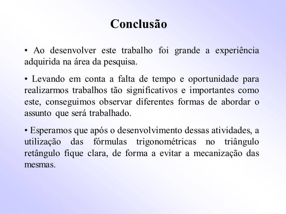 Conclusão • Ao desenvolver este trabalho foi grande a experiência adquirida na área da pesquisa.