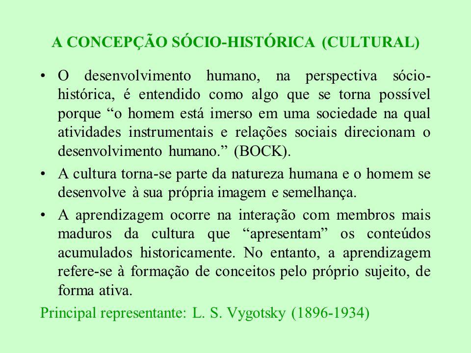 A CONCEPÇÃO SÓCIO-HISTÓRICA (CULTURAL)