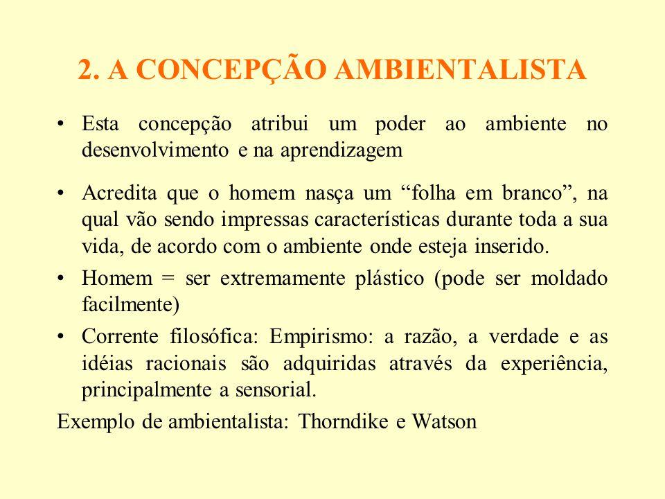 2. A CONCEPÇÃO AMBIENTALISTA