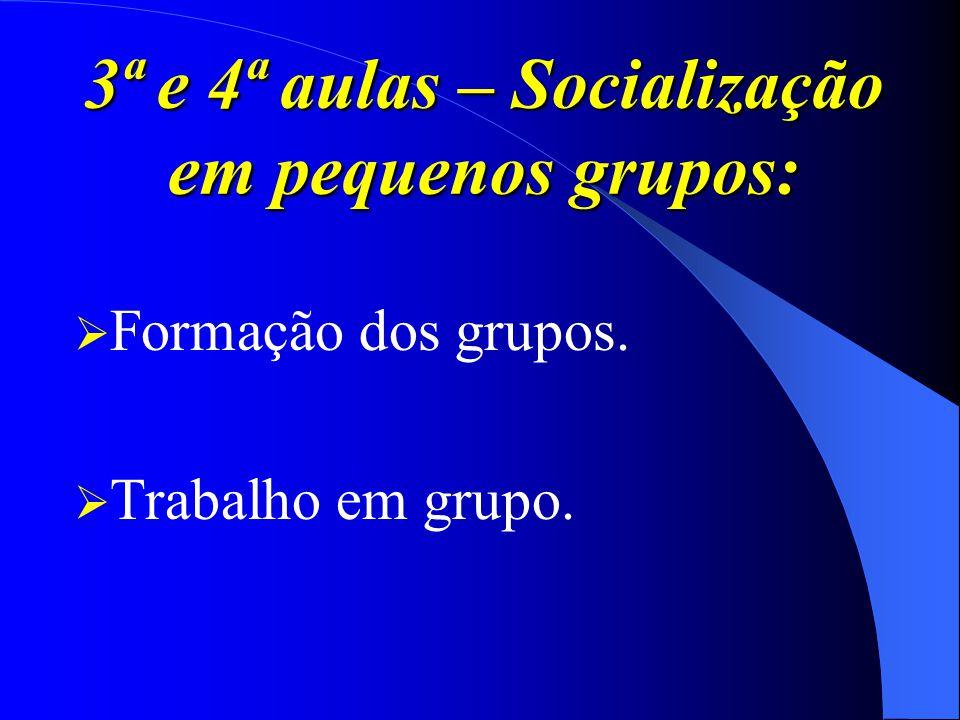 3ª e 4ª aulas – Socialização em pequenos grupos: