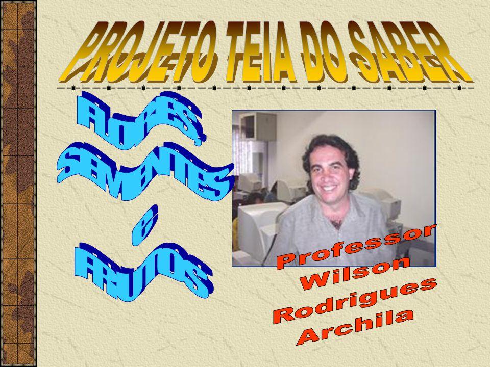 PROJETO TEIA DO SABER FLORES, SEMENTES e FRUTOS Professor Wilson