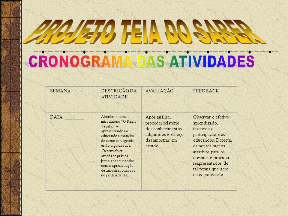 CRONOGRAMA DAS ATIVIDADES