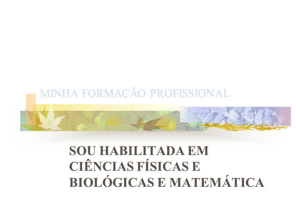MINHA FORMAÇÃO PROFISSIONAL