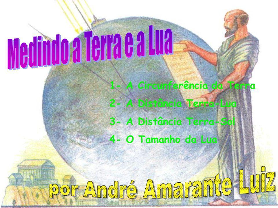 por André Amarante Luiz