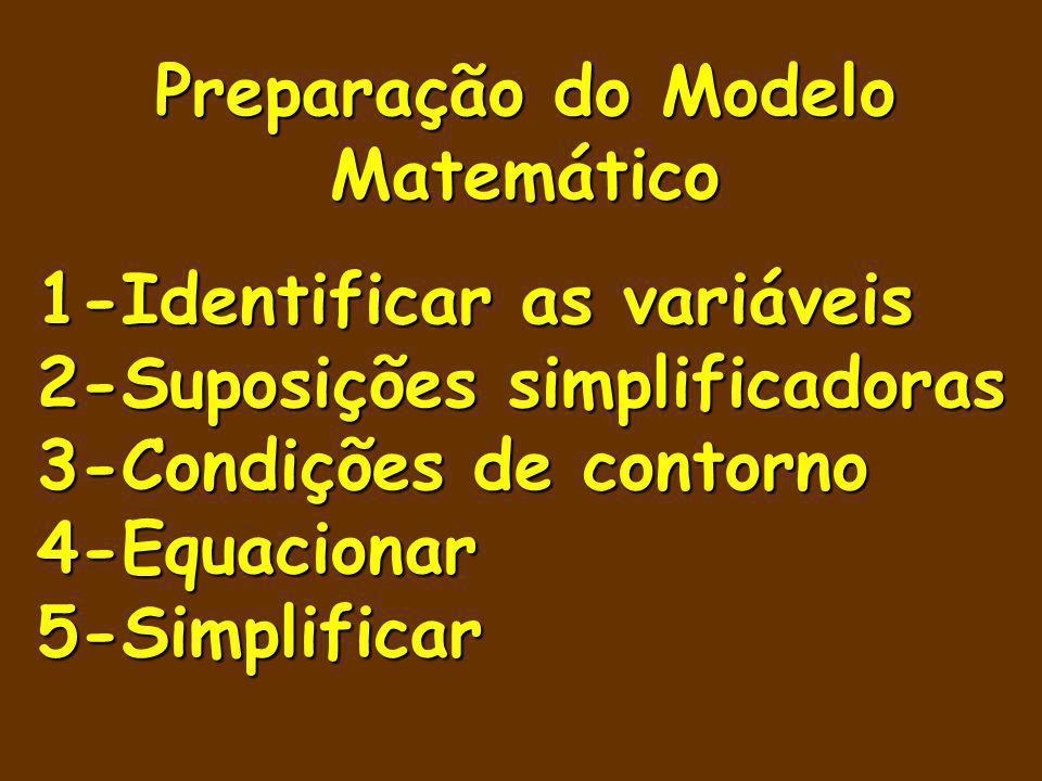 Preparação do Modelo Matemático