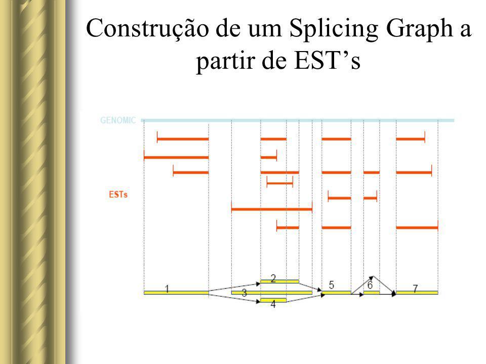 Construção de um Splicing Graph a partir de EST's